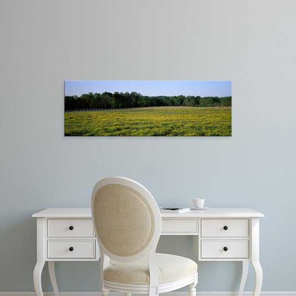 Easy Art Prints Panoramic Images's 'Fence along a field, Johnson County, Illinois, USA' Premium Canvas Art